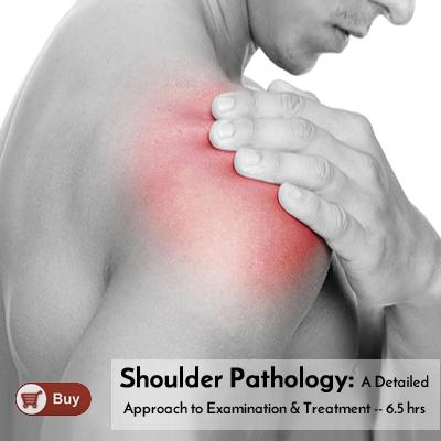 Shoulder Pathology: A Detailed Approach to Examination and Treatment